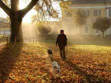 """""""Immagini della mia terra"""" porta in scena l'autunno"""