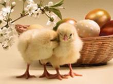Sorpresa nell'uovo di  Pasqua: i costi dell'Expo